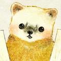 ニホンテンのイラスト marten illust