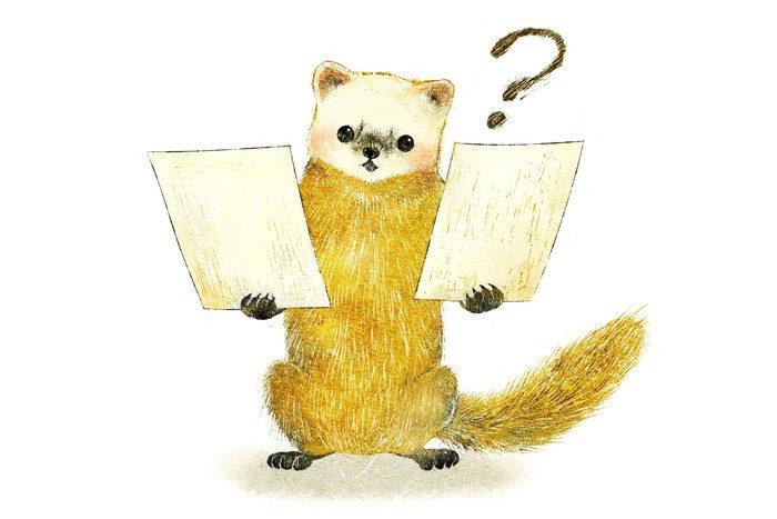 ニホンテンのイラスト テンの絵 日本の野生動物 絵本タッチのイラスト marten illust