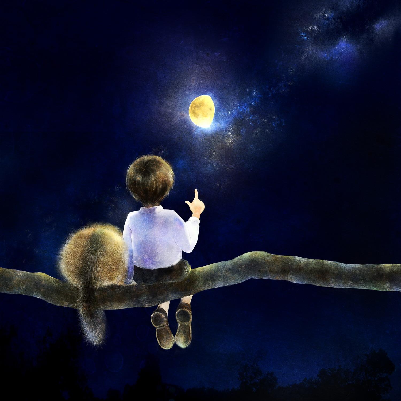 ニホンヤマネのイラスト ヤマネの絵 少年と星空