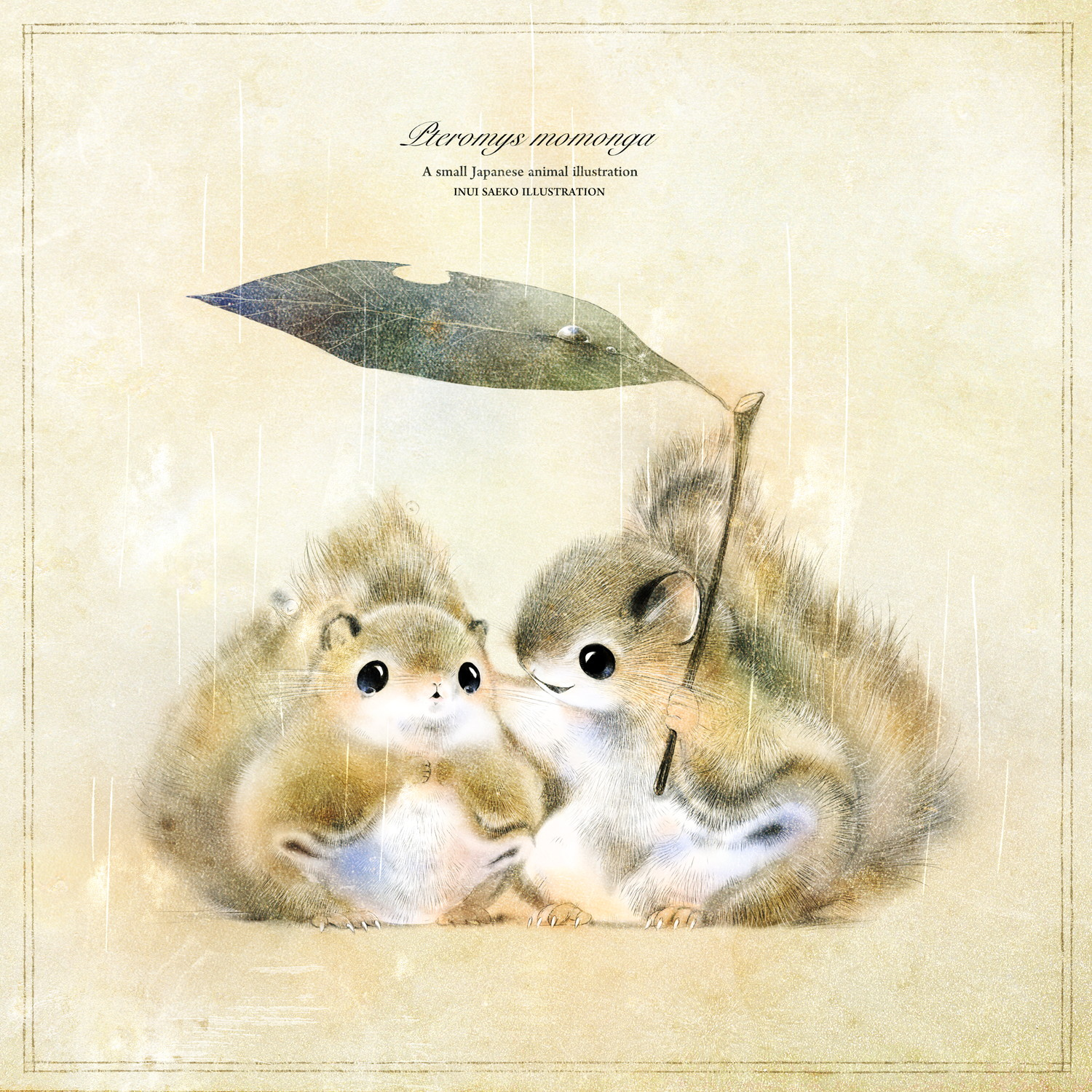 Flying-squirrel-02