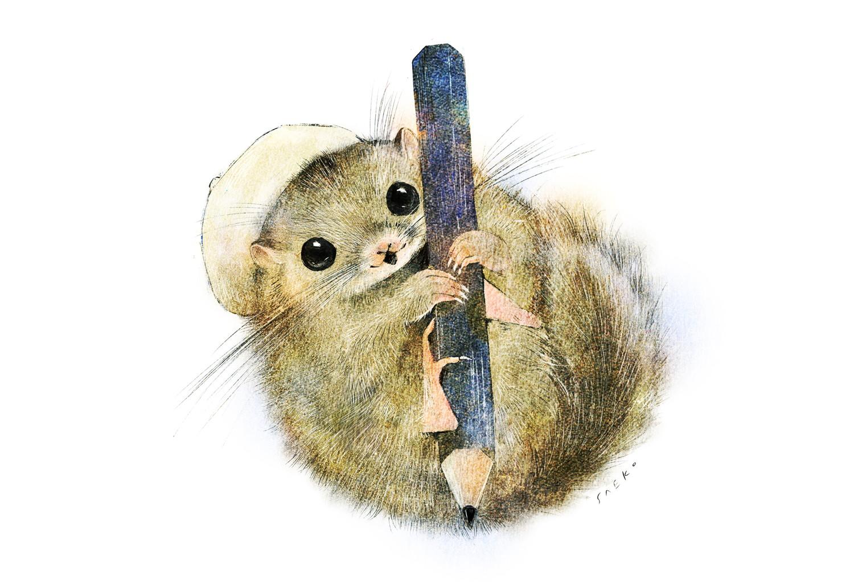 ニホンヤマネ 鉛筆のイラスト えんぴつ ヤマネのイラスト  ヤマネの絵 書いている挿絵 dormouse illust  Picture book