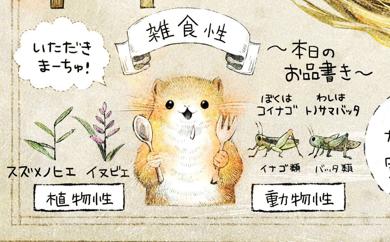 カヤネズミとは?イラスト解説 カヤネズミの食性。雑食性で、ヒエ類(イヌビエ、スズメノヒエ)、昆虫(イナゴやバッタ)をよく食べる。