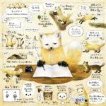 テン(貂)のイラスト 【ホンドテン・ニホンテン】暮らし・生態の解説絵 marten