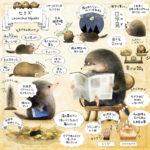 ヒミズのイラスト 【ヒミズ(shrew-mole)】動物の暮らし・生態の解説